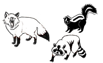 wild animals clipart